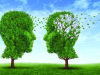 Мифы о шизофрении.