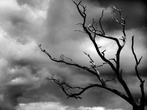 О депрессии — Depressia.com